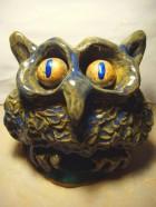 Owlie 5