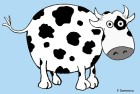 Holstein cartoon